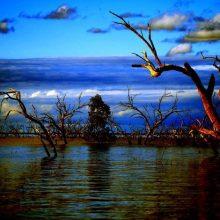 menindee-lakes-DSC_0488